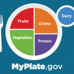 MyPlate.Gov sets the NSLP standards for catering school lunches